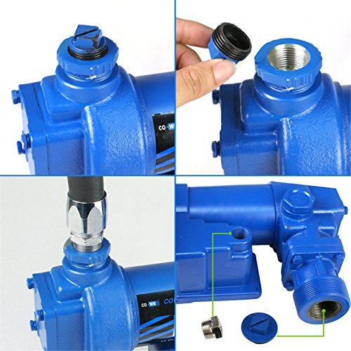 F2C 12 Volt 20GPM Electric Diesel Kerosene Gasoline Fuel Transfer Pump Fillrite Manual Nozzle Hose Kit … Blue by F2C (Image #3)