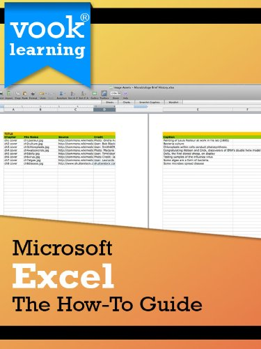 Microsoft Excel: The How-To Guide Pdf