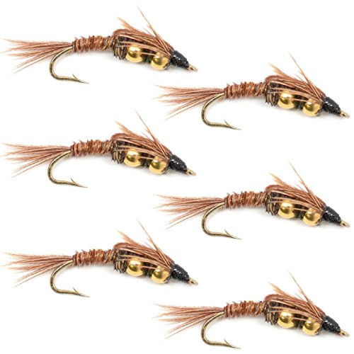 Double Bead Pheasant Tail Nymph Fly Fishing Flies - Trout and Bass Wet Fly Pattern - 6 Flies Hook Size 14