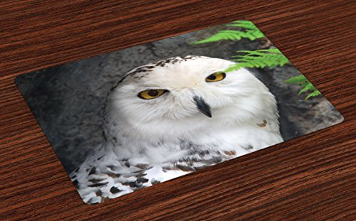 Ambesonne Wizard Place Mats Set of 4, Pattern White Owl Themed Animal Green Leaves Amber Eyes Gift Witchcraft Print, Washable Fabric Placemats for Dining Room Kitchen Table Decor, White Green Black (Ideas Room And Black White Dining)