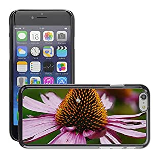 """Print Motif Coque de protection Case Cover // M00292661 Bloom Detalle colorido Equinácea // Apple iPhone 6 6S 6G PLUS 5.5"""""""