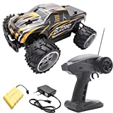 Gbell 20 km/h High Speed RC Racing Cars,1/16 2.4Ghz Remote Controlled Vehicle Toys,4WD Waterproof RC...