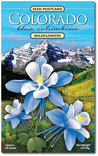 Colorado Columbine Wildflower Seed Packet - Enjoy The Natural Beauty of Colorado Flowers in Your Own Home Garden - State Flower