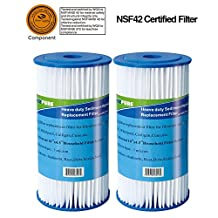 """Holiday promotions 2 PACK Icepure ICP-PPL10BB 10"""" x4.5"""" Universal Whole house big blue sediment pleated water filter compatible for Pentek S1 series"""