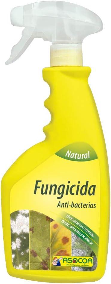 ASOCOA - Fungicida para Plantas. Acción Preventiva y Curativa. Acaba con Oidio y Mildiu.