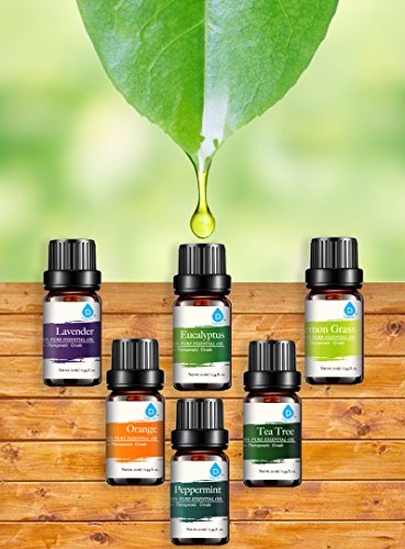 Pursonic 100 Pure Essential Aromatherapy Oils Gift Set 6