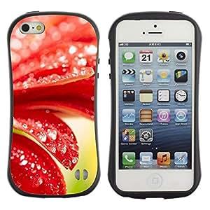"Hypernova Slim Fit Dual Barniz Protector Caso Case Funda Para Apple iPhone SE / iPhone 5 / iPhone 5S [Planta Naturaleza Forrest Flor 98""]"