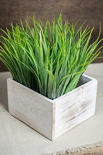 (Richland Planter Box Whitewashed Wood Square 6