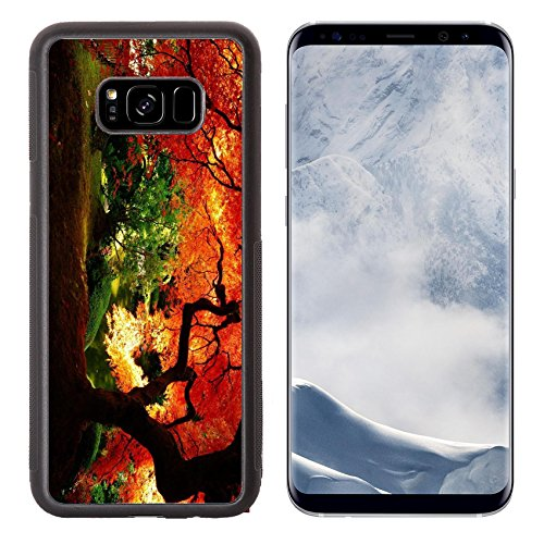 MSD Samsung Galaxy S8 Plus Aluminum Backplate Bumper Snap Case IMAGE of tree fall nature forest autumn red leaf orange branch outdoors color landscape yellow bright ()