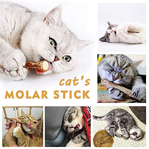 WoLover Natural Silvervine Sticks for Cats, Catnip Sticks Matatabi Chew Sticks Teeth Molar Chew Toys for Cat Kitten Kitty 5