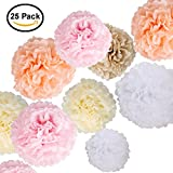Arts & Crafts : Paper Flowers - Fluffy Tissue Paper Pom Poms - Hanging Flower Ball for Baby Shower Decorations, Wedding Décor, Birthday Party Celebration - 25 Pcs