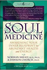 Soul Medicine: Awakening Your Inner Blueprint for Abundant Health and Energy Paperback
