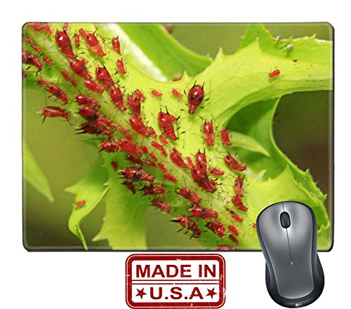liili-natural-rubber-mouse-pad-mat-with-stitched-edges-98-x-79-a-kind-of-insects-named-aphid-on-gree