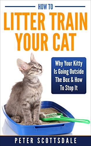 how-to-litter-train-your-cat-why-your-kitty-is-going-outside-the-box-how-to-stop-it