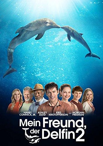 Mein Freund, der Delfin 2 Film