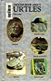img - for Step by Step Book About Turtles book / textbook / text book