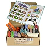Woolbuddy Needle Felting Starter Kit 16 Wool Colors, Felting Foam Mat, 6 Needles, 3 Thimbles, Instruction Book, Arts and Crafts, Easy for Beginners