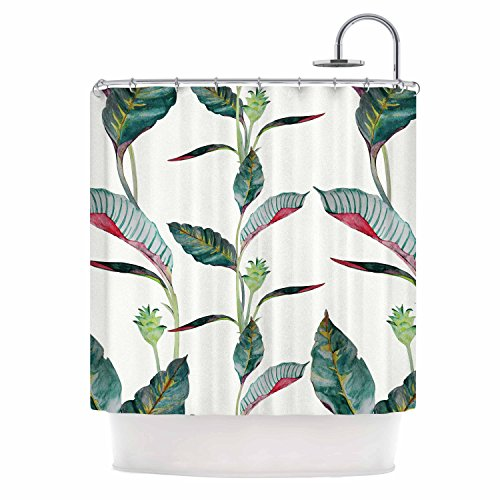 """Kess InHouse DLKG Design Ana Black Olive Shower Curtain, 69 by 70"""" from Kess InHouse"""