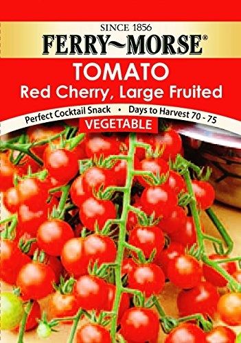 Ferry Morse Greenhouse - Ferry-Morse 1408 Red Cherry Large Fruited Vegetable Seed