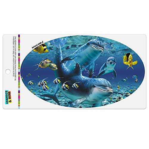 Graphics and More Coral Reef Diving Dolphin Pals Diving Automotive Car Refrigerator Locker Vinyl Euro Oval Magnet