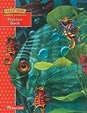 Collections Hidden Surprises: Grade 3 Practice Book