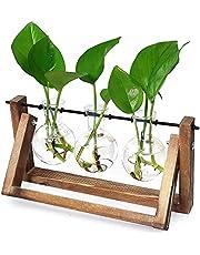 Ivolador Desktop Glass Plants Terrariums Bulb Vase with Retro Solid Wooden Stand and Metal Swivel Holder for Hydroponics Plants Home Garden Wedding Decor Indoor Outdoor (3 Bulb Vase)