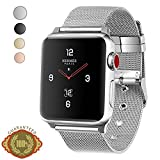 Apple Watch Band, LWCUS Classic Buckle Milanese Loop Iwatch Band, Fancy Apple Watch Accessories for Apple Watch Series 3 Series 2 Series 1, Hermes, Edition, Sport (42mm-Elegant Silver)