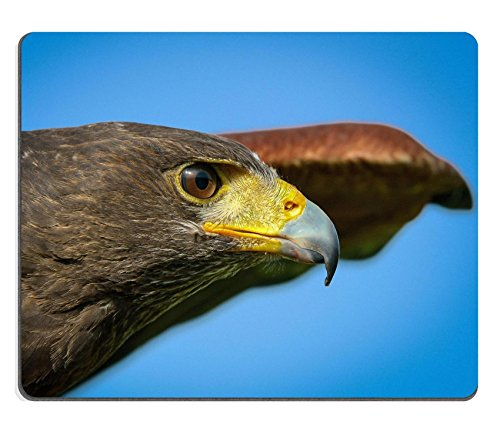msd-customized-natural-rubber-mouse-pad-personalized-custom-picture-portrait-of-a-hawk-harris-365619