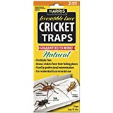 HARRIS FAMOUS ROACH TABLETS Harris Cricket Glue Traps with Irresistible Lure (2-Pack), Natural & Pesticide Free