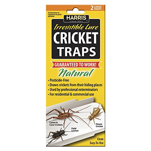 Harris Natural Cricket Glue Traps with Irresistible Lure (2-Pack) (Cricket Bait)
