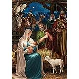 Custom Decor Nativity Scene- Fm