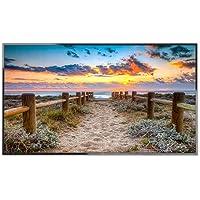 NEC MultiSync E556 - LED monitor - 55inch