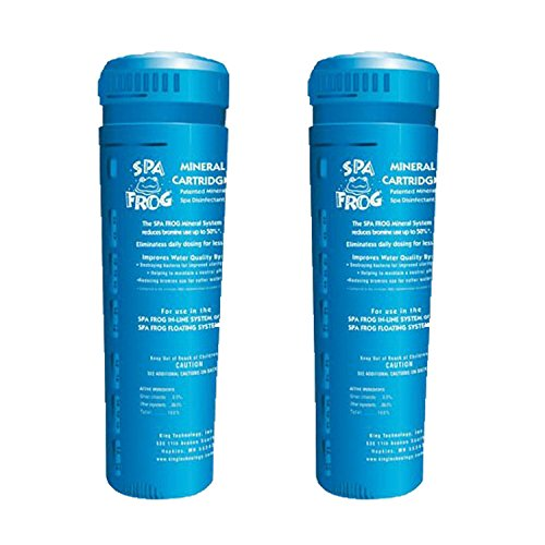 Spa Frog Mineral Cartridge, 2 Pack, Bundled with Üben Pool Thermometer