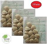 Todorganic Natural Products - Nuez dela India - 3 Packs ( 36 Seeds) 100% Natural
