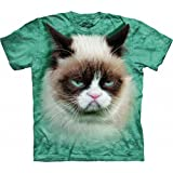 The Mountain Kids Grumpy Cat T-Shirt, Medium, Teal
