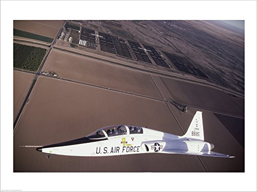 U.S. Air Force T-38 Trainer Laminated Art Print, 19, used for sale  Delivered anywhere in USA