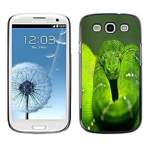 Caucho caso de Shell duro de la cubierta de accesorios de protección BY RAYDREAMMM - Samsung Galaxy S3 I9300 - Snake Green Nature Rainforest Reptile Tail