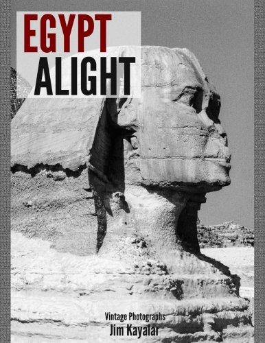 Egypt Alight pdf epub