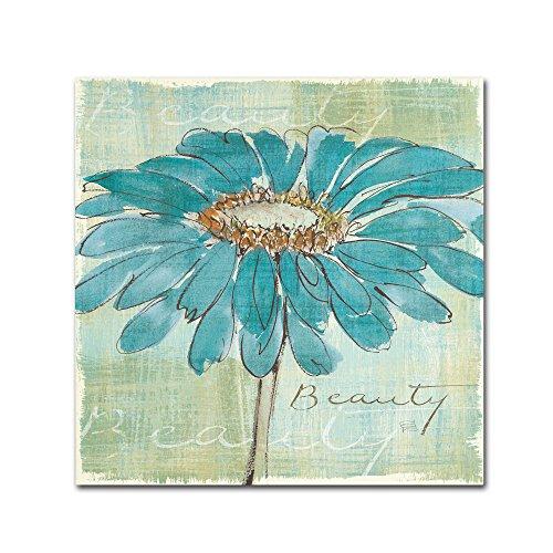Spa Daisies I by Chris Paschke Wall Decor, 24 by 24-Inch Canvas Wall Art ()