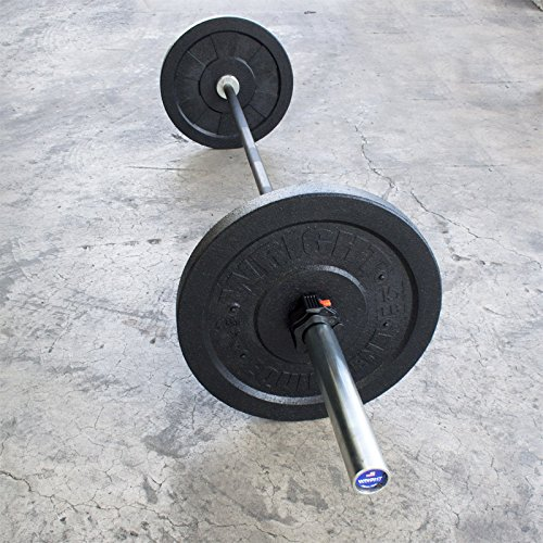 15lb Wright USA Crumb Bumper Plates Pair - Free Shipping by Wright Equipment