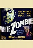 White Zombie Movie Poster (30 x 30 Inches - 77cm x 77cm) (1932) -(Bela Lugosi)(Madge Bellamy)(Joseph Cawthorn)(Robert Frazer)