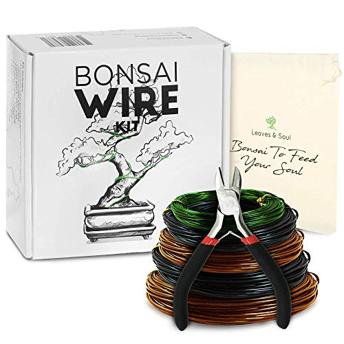 Kit de entrenamiento para bonsai