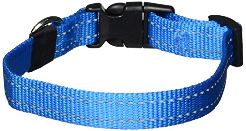 ROGZ Reflective Dog Collar for Medium Dogs, Adjustable from 12-17 inches, Turquoise