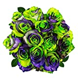 FRESH Tinted Roses| Green, Purple and Black| 25 stems (Earth Rose) Magnaflor - XXL Blooms| Bunch| 10-12 days vase Life