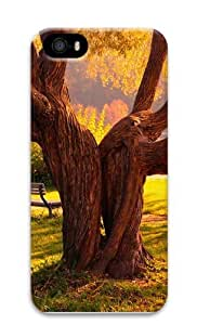 Beautiful Old Tree Custom iPhone 5s/5 Case Cover Polycarbonate 3D by Maris's Diary