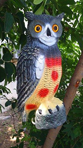 Zilin Plastic Owl Decoy Owl Bird Deterrent Owl Bird Scarer