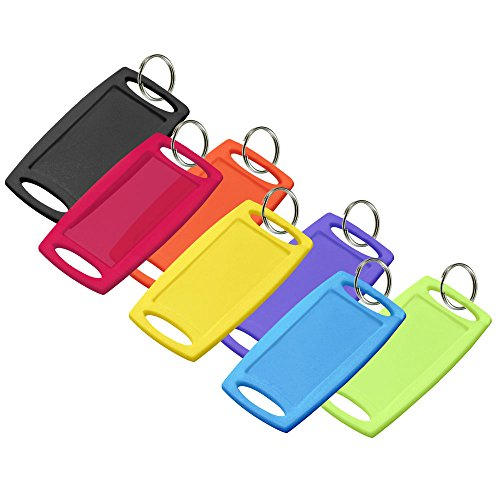 Lucky Line Large Rectangular Label-It Plastic Tag with Ring, 12 Pack, Assorted Colors (18029)