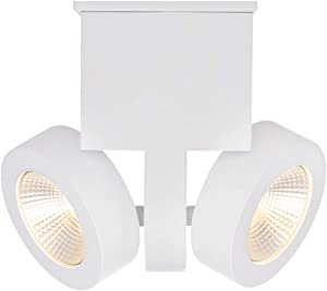 RUNNLY LED Ceiling Light Flush Mount Track Spot Lighting with Cree Chip 2x10W, Directional for Staircase Hallway Home Office Commercial