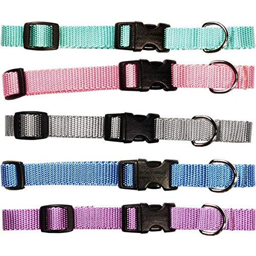 Scott-Pet Pastel Collection Adjustable Nylon Pet Collar Grey 16