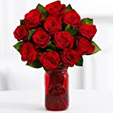 ProFlowers - 12 Count Red One Dozen Red Roses w/Free Vase - Flowers